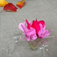 卵ケースに花を飾る