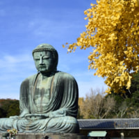 人と仏と紅葉と in 鎌倉