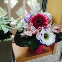 ボランティアのお花!