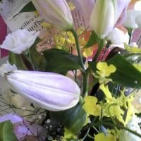 百合の花🌼