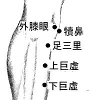 甲状腺機能低下症と脚気の針灸治療 ver.1.2