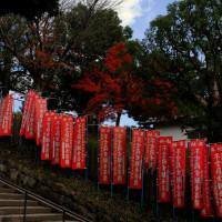 東大寺から興福寺を通って…