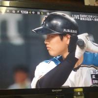 日本シリーズ目が離せない試合だったが、負けてしまった