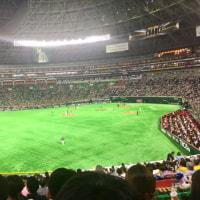 野球観戦…