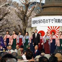 2017靖国神社桜の開花宣言!