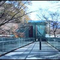 信州・箱根での美術館巡り 第二章 ポーラ美術館~モダン・ビューティ~ 三)到着、ポーラ美術館