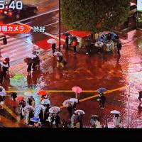 2/21 森田さんの 雨の渋谷 昨夜
