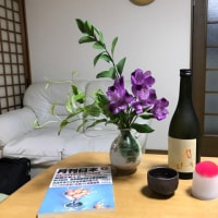 Tonight's Sake is Zyunmai (100% pure Sake) Daiginzyo (shape rice) 'Gassan' ( means moon mountains).