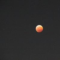 皆既月食が見れました
