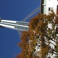 タワーホール船堀17