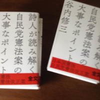 「詩人が読み解く自民党憲法案の大事なポイント」の購入方法