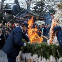 ・ 白旗神社 どんど焼き 2017