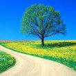 ■自らの運命を探り望む方向へ変え、運気を上げる凄い瞑想法