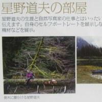 星野道夫の旅/没後20年特別展