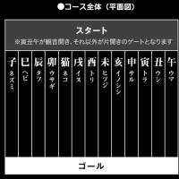 十二支再競争・・・どれ選ぼう(^_^;