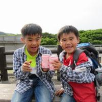 ミヤマキリシマ\(^o^)/兄弟登山♪ ~ 登頂から下山へ ~