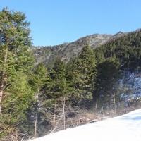 山の氷柱(ツララ)
