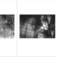 ゴトーマサミ WEB 写真展(233) #Summicron-Straight