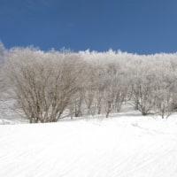 白い風景、再び