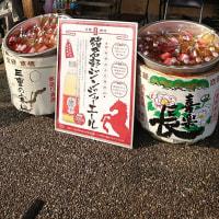 【ヴィアティン三重】JFL 第19回日本フットボールリーグ1stステージ第十節 HOME 奈良クラブ戦