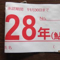 2017年 越後むらかみ清流三面川あゆ解禁6月24日土曜日零時解禁です!