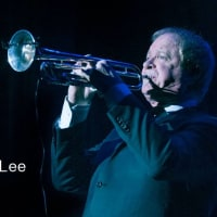 HAPPY BIRTHDAY! LEE LOUGHNANE(chicago TP)