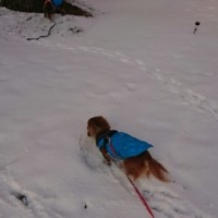 雪景色だ~☆
