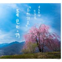 津島隆雄写真展『自然詩集』 五番 色彩の詩