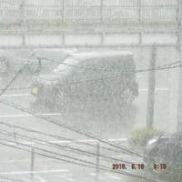 2016年09月18日(日曜日) 晴れ→ 曇り → 俄雨→ 曇り→(移り変わる=台風16号の影響)