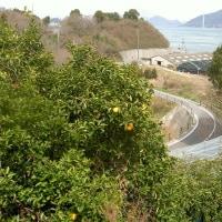 3/25 しまなみ縦走スタンプラリーの旅(その3)