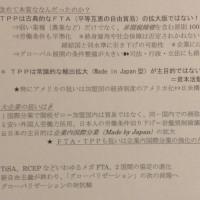 ・ 日記平成28年10月30日~