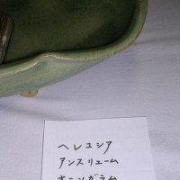 文化祭・・青☆会パッチワーク部