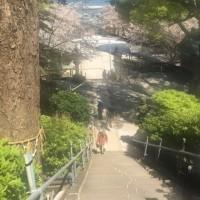 横須賀にいます