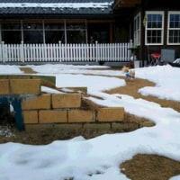 228さんは雪がいっぱい!