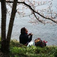 ボチボチと 4月25日(火)晴れのち曇り
