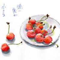 赤い実が 小さな恋人 サクランボ