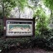 全長37Kmの世界一長い並木道「日光杉並木」