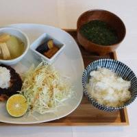 鮭バック(摘果みかん添)
