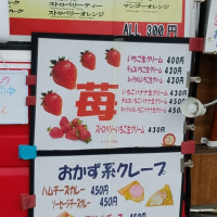 一期 いちご巡り 知多半島 No.93