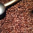 2014年 ブラジル棚干し 手摘み完熟豆1番摘み 新発売です