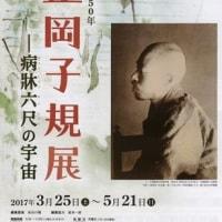 文学散歩「生誕150年 正岡子規展ー病牀六尺の宇宙」―神奈川近代文学館にて―