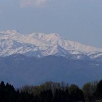 山の家の庭からの、春の白山遠望・・・家の周りの立木伐採で、パノラマ絶景が出現!