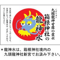 13日は九頭龍神社本宮新年祭です。