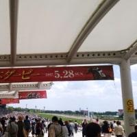 日本ダービーにきました