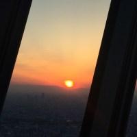 Mamieのフランス留学日記 東京観光