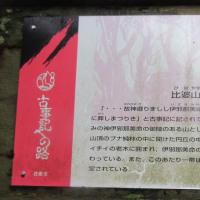 広島の山その2 比婆山連峰