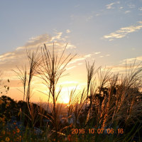 初秋の日の出は久し振り