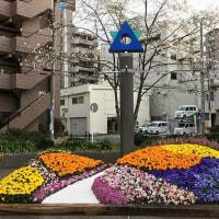 蒔田公園でも『緑化よこはまフェア2017』♪〜