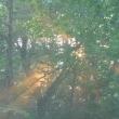もみの木森林公園オートキャンプ