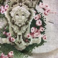ミラビリア The Rose of Sharon 36日目